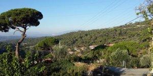 Kavaklıdere Çamlıyurt Köyü