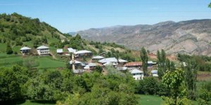 Doğanşar Yeşilçukur Köyü