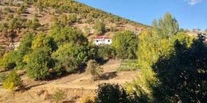 Nazımiye Ballıca Köyü