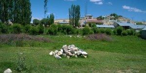 Gürün İncesu Köyü