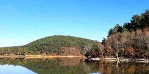Arifiye Adliye Köyü