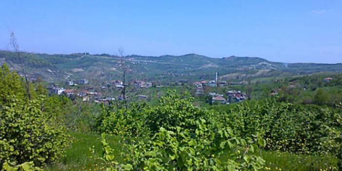 Alaplı Alaplıömerli köyü
