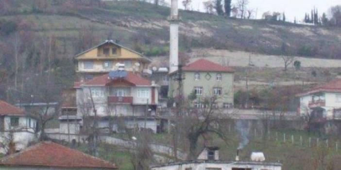 Alaplı Bektaşlı Köyü