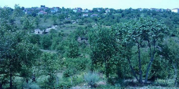 Alaplı Canbazlı Köyü