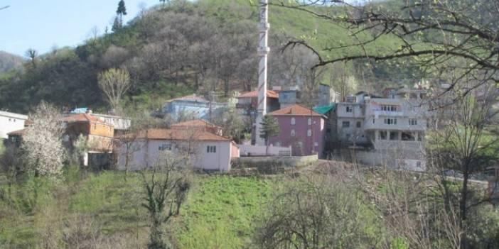 Alaplı Hallı Köyü