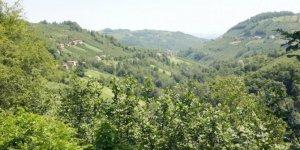Gürün Yeşildere Köyü