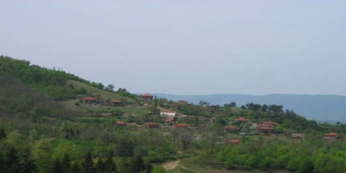 Ereğli Velidağ Köyü