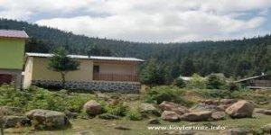 Bolu Seyitaliler Köyü