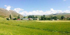 Hafik Benlikaya Köyü