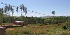 Hafik Güneli Köyü