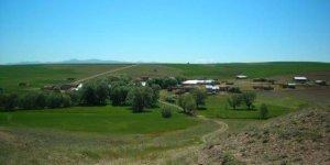 Kangal Armağan Köyü