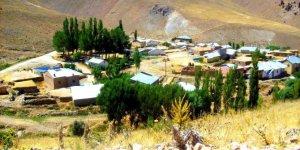 Kangal Ceviz Köyü