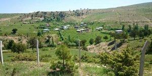 Kangal Çağlıcaören Köyü