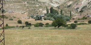 Kangal Killik Köyü