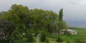 Kangal Kuruayşe Köyü