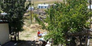 Kangal Paşamçayırı Köyü