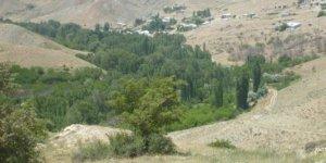 Kangal Turnalı Köyü