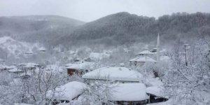 Altınova Sermayecik Köyü
