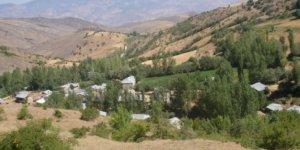 Koyulhisar Ekinözü Köyü