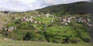 Koyulhisar Güzelyurt Köyü