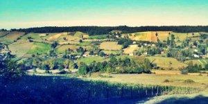Alaçam Kışlakonak Köyü