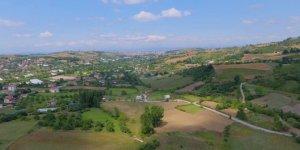 Yalova Safran Köyü