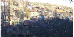 Alaçam Pelitbüküsekicek Köyü