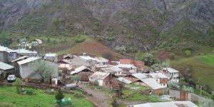 Suşehri Yaygınsöğüt Köyü