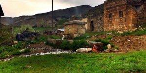 Aşkale Tecer Köyü