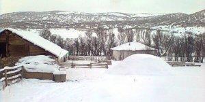 YıldızeliDikilitaş Köyü
