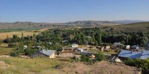 YıldızeliDirekli Sarıkaya Köyü