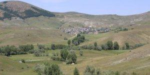 YıldızeliDoğanlı Köyü