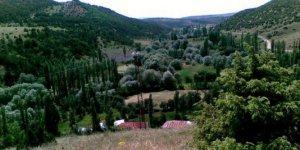 YıldızeliFındıcak Köyü