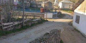 YıldızeliGeynik Köyü