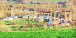 YıldızeliKayalıpınar Köyü