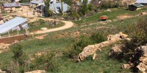 YıldızeliNevruz Köyü