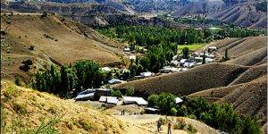 Zara Alişanağılı Köyü