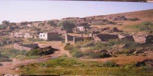 Zara Büyükgüney Köyü