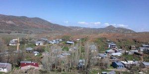 Zara Çaylı Köyü