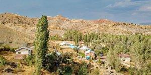 Zara Danışık Köyü