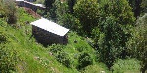 Zara Gölbaşı Köyü