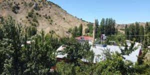 Zara Ilıca Köyü