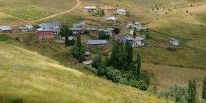 Zara Söğütlü Köyü