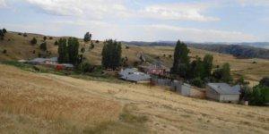 Zara Söğütlüağıl Köyü