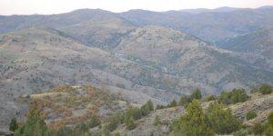 Zara Şafaklı Köyü