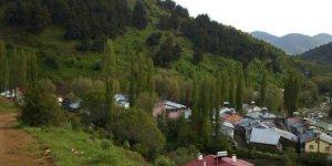 Zara Ütükyurdu Köyü
