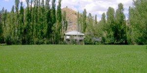 Zara Yeşildere Köyü