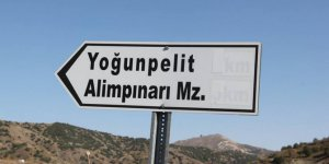 Zara Yoğunpelit Köyü