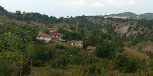 Ovacık Koltuk Köyü