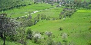 Ovacık Pelitçik Köyü